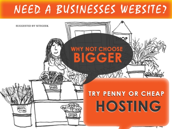 penny_hosting_business